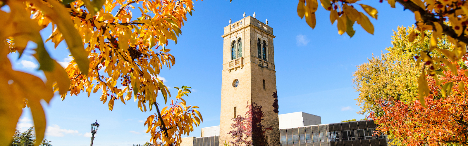 Carillon Tower and the Sewell Social Sciences Building during autumn